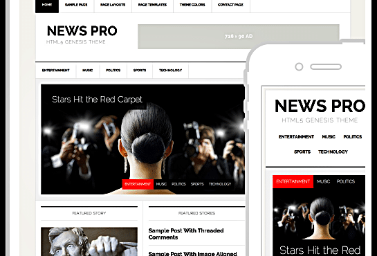 WordPress-News-Pro-Theme