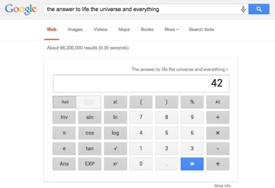 Google-the-ultimate-answer
